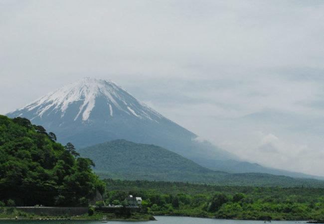 aokigahara1
