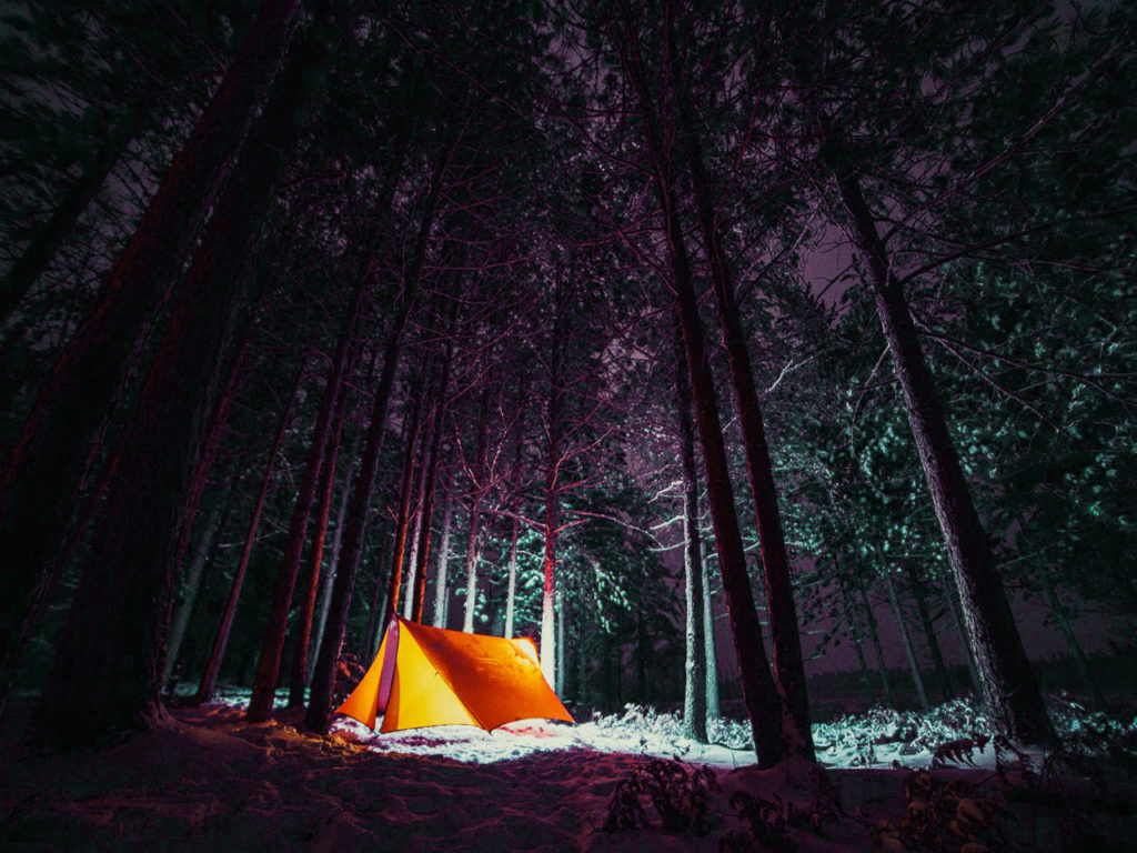 camping in the woods at night. Camping In The Woods At Night GhostHunt UK